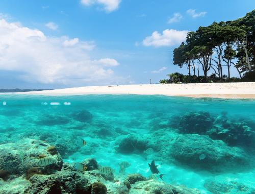 Andaman-and-Nicobar-Island-trip2flight.png